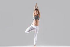 Young woman in Vrksasana pose, grey studio background. Young attractive woman practicing yoga, standing in tree exercise, Vrksasana pose, working out wearing Royalty Free Stock Photography