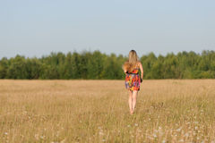 Young woman walk in the field Royalty Free Stock Photos