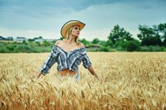 A young woman on a walk in the field with wheat Royalty Free Stock Photos