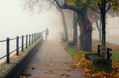 Young woman walking alone on foggy autumn day Stock Images