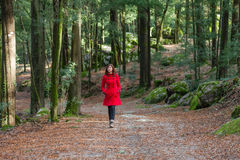 Young woman walking alone on a forest Stock Image