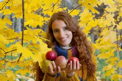 Young woman is walking in the autumn wood Royalty Free Stock Photo