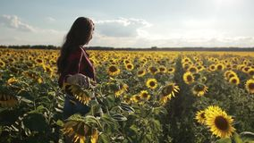 Young woman walking away in sunflower field stock footage
