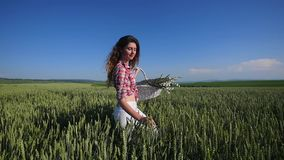 Young woman walking with basket with flowers a wheat field with blue sky on the background stock video