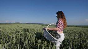 Young woman walking with basket with flowers a wheat field with blue sky on the background stock video footage