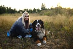 Young woman walking with Bernese Mountain Dog on the summer field. Portrait of a young athletic caucasian woman sitting and scratching the dog`s back. Bernese royalty free stock photos