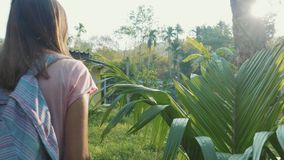 Young woman walking on countryside path through asian village, slow motion. Steadicam shot of young backpacker woman walking alone on a countryside path through stock video