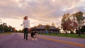 Young woman walking with a dog in autumn park, leads her on a leash. Slow motion stock video