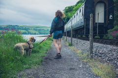 Young woman walking dog by railroad tracks Royalty Free Stock Images