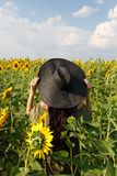 Young woman walking in the field with sunflowers. Beautiful young girl enjoying nature on the field of sunflowers at sunset stock photos