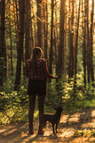 Young woman walking french bulldog in forest at sunset.  Stock Photo