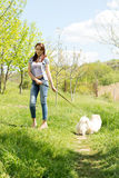 Young woman walking her dog Stock Images