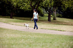 A young woman walking her dog in the park Royalty Free Stock Image