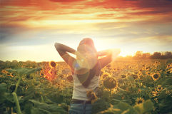 Young Woman Walking In The Field With Sunflowers Stock Photos
