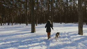 Girl running with her dog in winter forest, sun shines through the pines stock footage