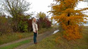 Young Woman Walking At Nature In Autumn stock footage