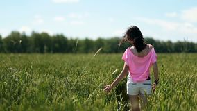 Young woman walking ona green wheat field stock footage