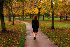Young woman walking in park. A young woman is walking in the park on an autumn's day Royalty Free Stock Photography