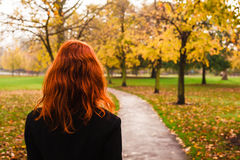 Young woman walking in park. A young woman is walking in the park on an autumn's day Royalty Free Stock Image