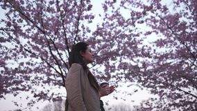 Young woman walking in a park with blossoming sakura drinking coffee from a paper cup dreaming stock video footage