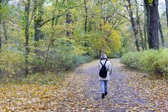 Young woman walking in the park, rear view. Lonely young woman walking in the park, rear view Stock Image