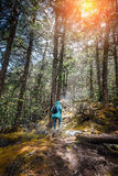 Young woman walking on path into an enchanted forest. Young woman walking on path into an enchanted forest travel concept Stock Photography