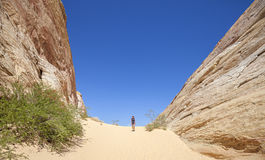 Young woman walking on sand between great rock formations, USA. Royalty Free Stock Photo