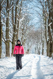 Young woman walking in the snow Stock Image