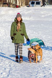 Young woman walking with two American Pit Bull Terrier winter Royalty Free Stock Images