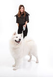 Young woman walking a white dog in front of her stock photo