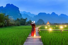 Young woman walking on wooden path with green rice field in Vang Vieng, Laos.  Stock Image