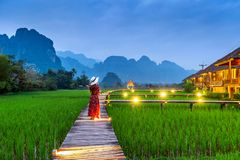 Young woman walking on wooden path with green rice field in Vang Vieng, Laos.  Stock Photo
