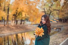A young woman walks in the autumn Park. She stands by the lake. Brunette woman wearing a green coat stock images