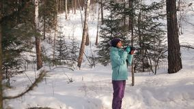 A young woman walks through the winter forest and photographs nature. stock video footage