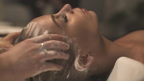 Young woman washing hair and head with shampoo in hairdressing salon. Woman client receiving washing head and massage in. Beauty studio. Hairstylist shampooing stock video footage