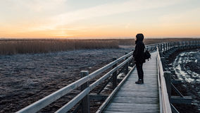 Young woman watching sunrise on a wooden boardwalk with bird wat Royalty Free Stock Images