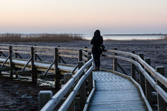 Young woman watching sunrise on a wooden boardwalk with bird wat Stock Images