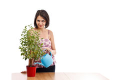 Young woman watering Royalty Free Stock Image