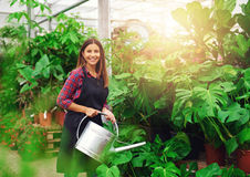 Young woman watering Delicious Monster plants Stock Photography