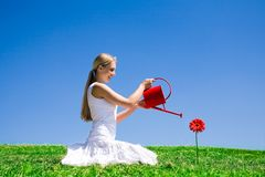 Young woman watering flower royalty free stock images