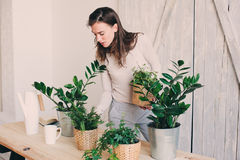 Young woman watering flowerpots at home. Casual lifestyle series in modern scandinavian interior Stock Photography