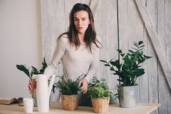 Young woman watering flowerpots at home. Casual lifestyle series in modern scandinavian interior Royalty Free Stock Photo