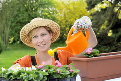 Young woman watering flowers Royalty Free Stock Photography