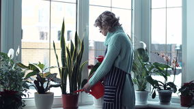 Young woman watering flowers inside home stock video footage