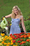 Young woman watering the garden Royalty Free Stock Photography