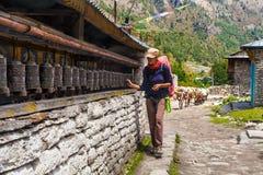 Young Woman Wearing Backpack Trekking Touching Tibetan prayer Wheels or Prayers Rolls Faithful Buddhists.Caravan Animal Stock Images
