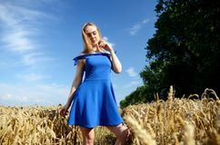 Young woman wearing blue dress in field Stock Image