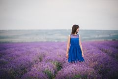 Young woman wearing blue dress standing in a lavender field Royalty Free Stock Photography