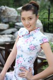 Young woman wearing cheongsam Stock Photography