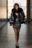 Young Woman Wearing A Fur Coat Royalty Free Stock Photo